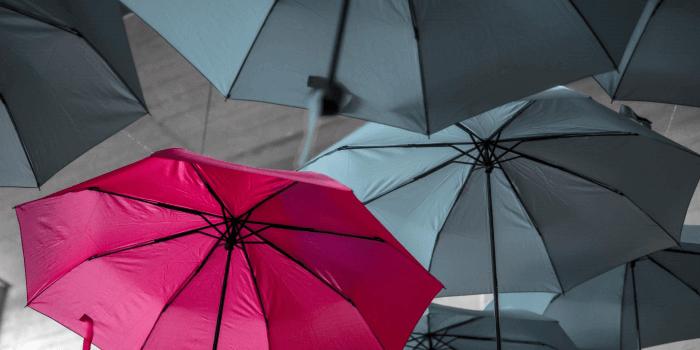 Pink umbrella in sea of gray umbrellas
